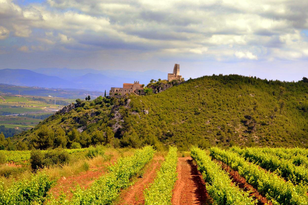 Castell de Subirats, al Penedès - Àngela Llop